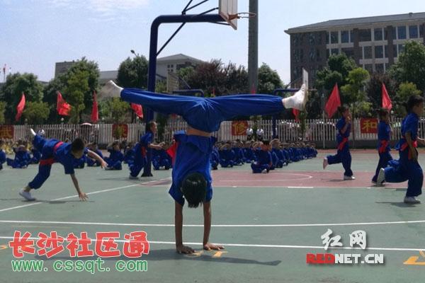 长沙县泉星武术功夫小学百名与少年共铸父母高店红光小学图片