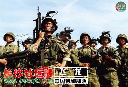 龙(南京军区的陆军侦察兵特种部队)-中国人民解放军十大特种部队