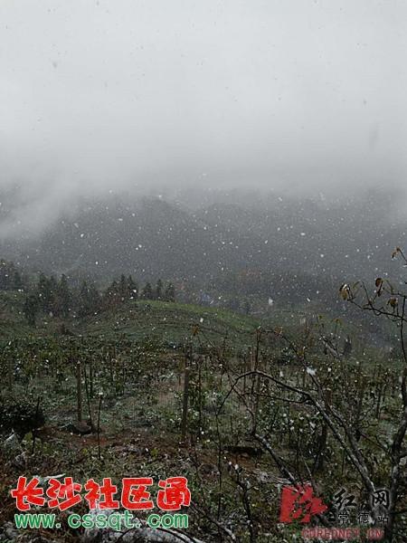 常德东山峰飘下今冬首雪