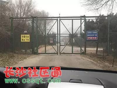 北京野生动物园白虎区有游客下车?