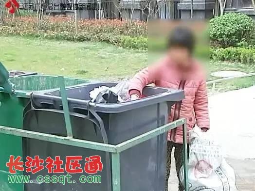 垃圾桶剩饭剩菜图片
