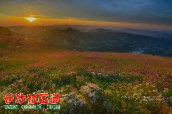 梵净山位于贵州省铜仁市,得名于梵天净土,原来的正名为三山谷,国务院于1978年将其确定为国家级自然保护区,联合国教科文组织于1986年将梵净山接纳为全球人与生物圈保护区网的成员单位(中国只有五个成员单位)。  梵净山乃武陵正源,名山之宗,曾先后荣膺2008年度和2009年度的中国十大避暑名山,梵净山梵净山是全国著名的弥勒菩萨道场,是与山西五台山、四川峨眉山、安徽九华山、浙江普陀山齐名的中国第五大佛教名山,在佛教史上具有重要的地位。  申报进展:当前,铜仁市已明确表示梵净山申遗和创5A景