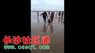 """游客命丧广东阳江海陵岛 海浪""""吃""""人  又是溺水事故!"""