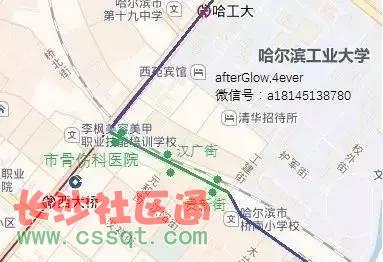 因道路施工 哈尔滨11条公交线路站台大调整