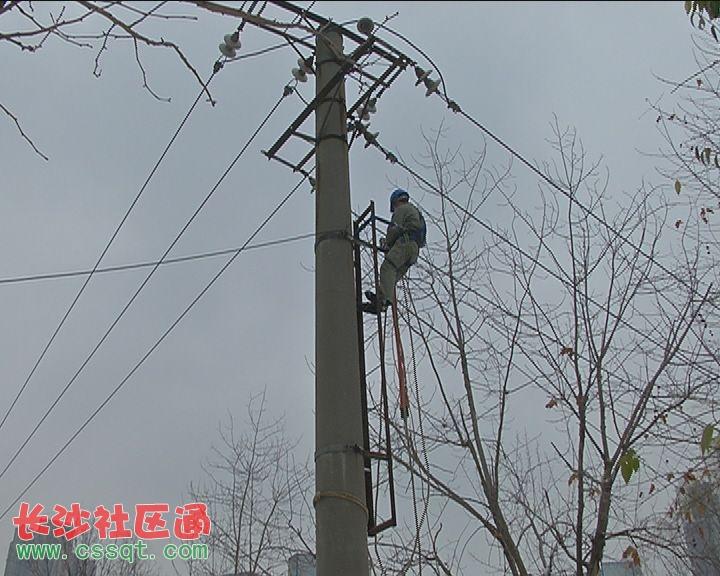 一万伏高压电杆倾倒 国家电网冒雪抢修!