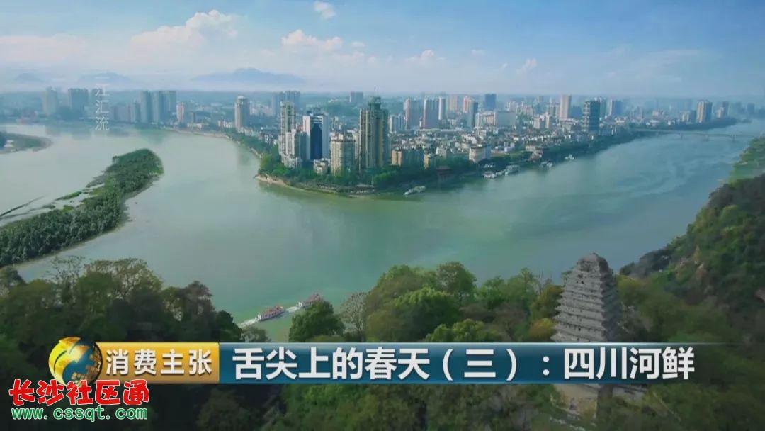 樂山,位于岷江,大渡河和青衣江三江交匯處,盛產河鮮,河鮮品種十分豐富