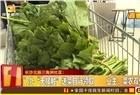 长沙北辰三角洲D2区启用公共收益!免费逐户赠送新鲜蔬菜