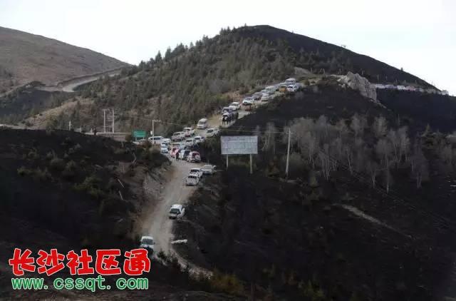 宁夏海原南华山昨夜突发大火 凌晨5点 记者驱车300公里进入现场